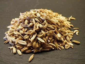 Fennel seed is great for digestive health and antioxidant effects on the colon